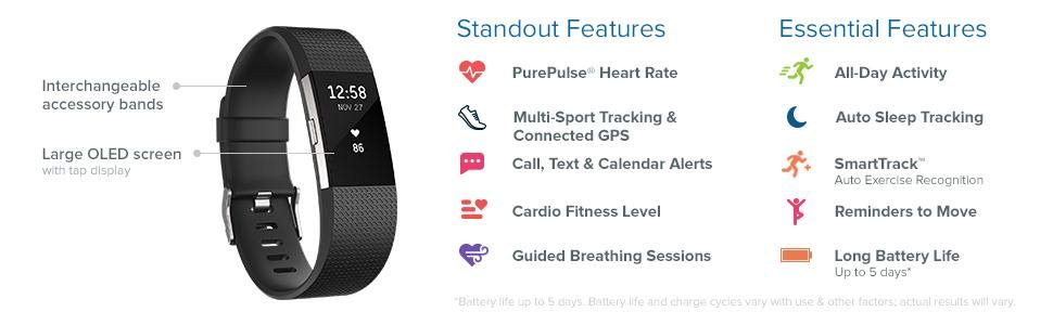 Fitbit Charge 2 - EpicAccountStore 1